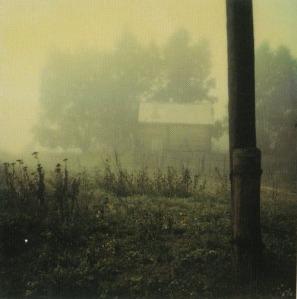 Andrei Tarkovsky. Polaroid, Russia.